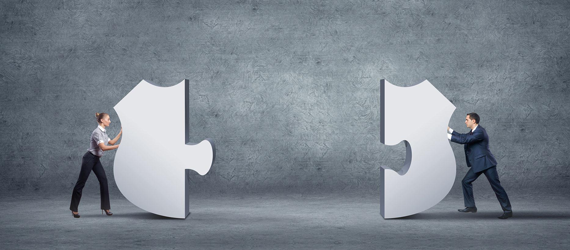 CONANIMA match & link